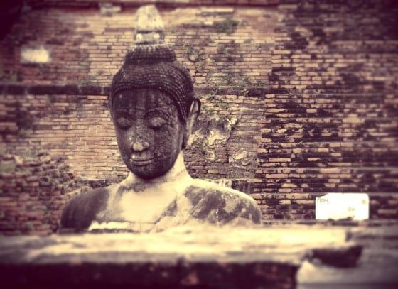 Buda en el Wat Maha That de Ayutthaya