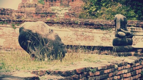 Cabeza de Buda en el Wat Maha That