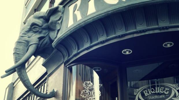 Elefante decorativo Café Riquet