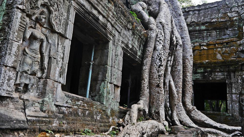 Ta Phrom - Templos de Angkor