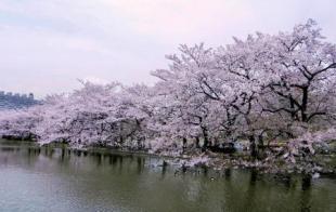 Ueno - Dónde dormir en Tokio, Japón - Mejores barrios y distritos