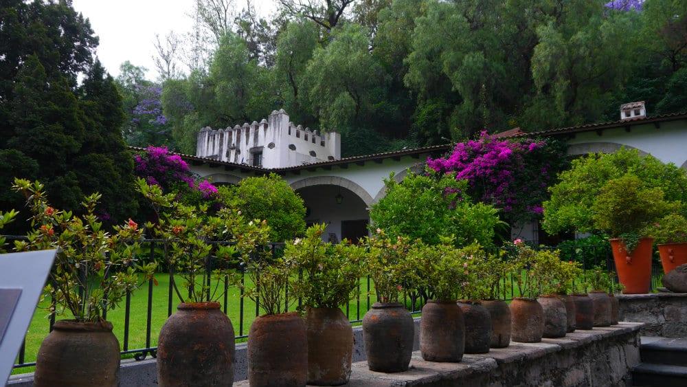 Jardines de la Noria - Museo Dolores Olmedo