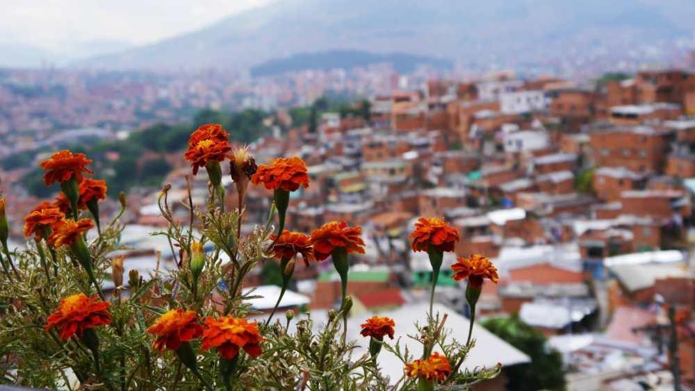 Imperdibles de Medellín - Comuna 13