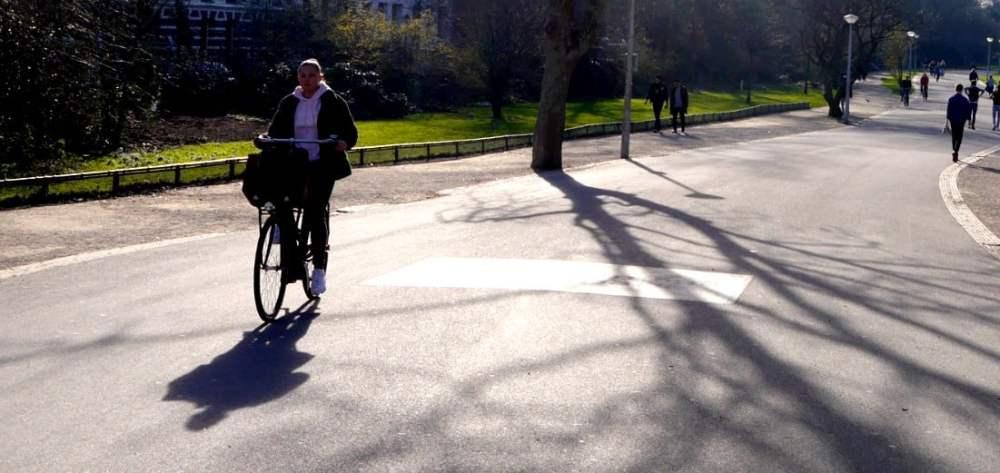 Cosas que hacer en Rotterdam - Ir en bici por la ciudad