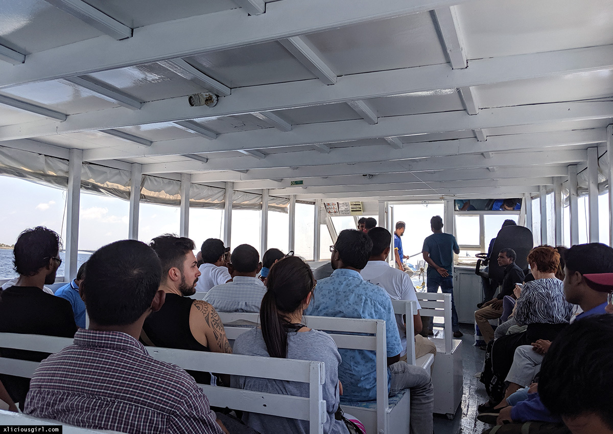 people sitting facing forward on a boat