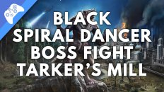 Black Spiral Dancer Boss Fight