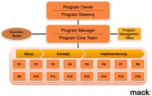 Program Management Structure
