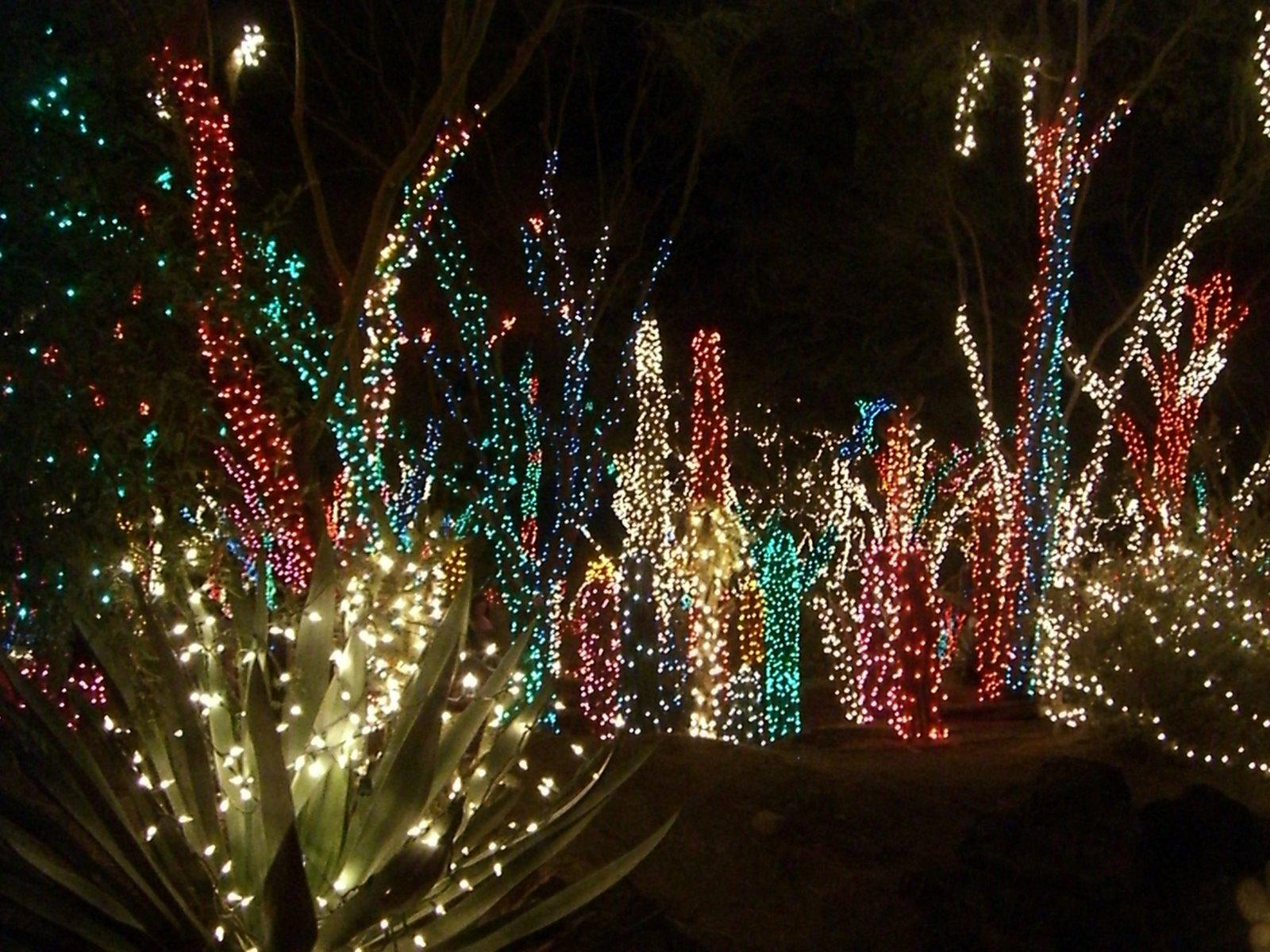 Outdoor Christmas Light Xmasblor