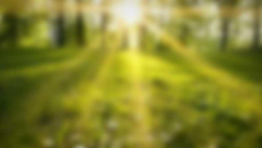MentalPress Quale ansia va portata in terapia?