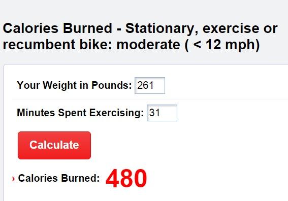 Recumbent Exercise Bike Calories   Bike Pic