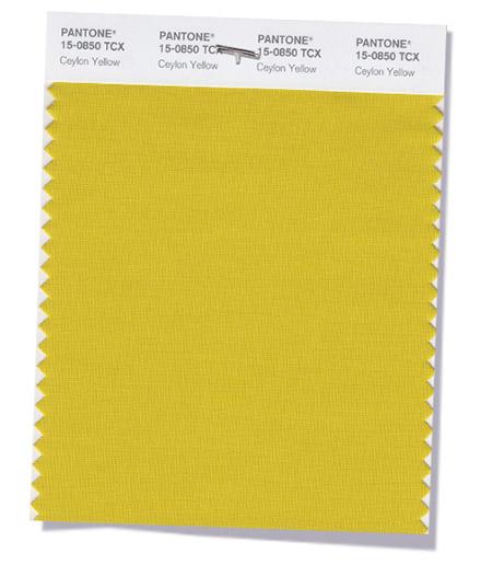 Culoarea Ceylon Yellow
