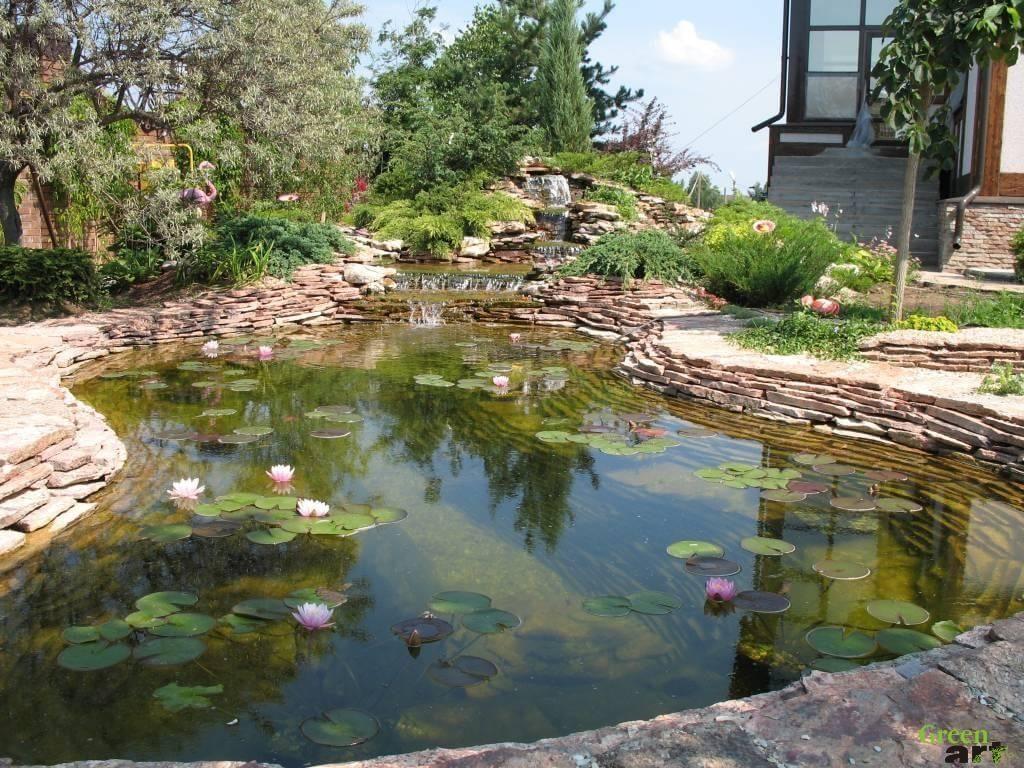 decorative-pond-1-1024x768