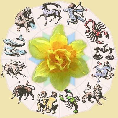 Цветок женщины козерога