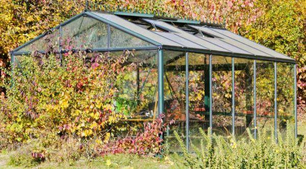 Осенняя профилактика сада