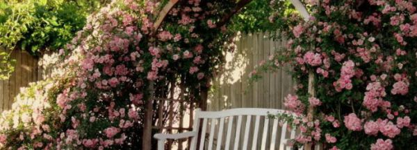Романтический сад в сельском стиле