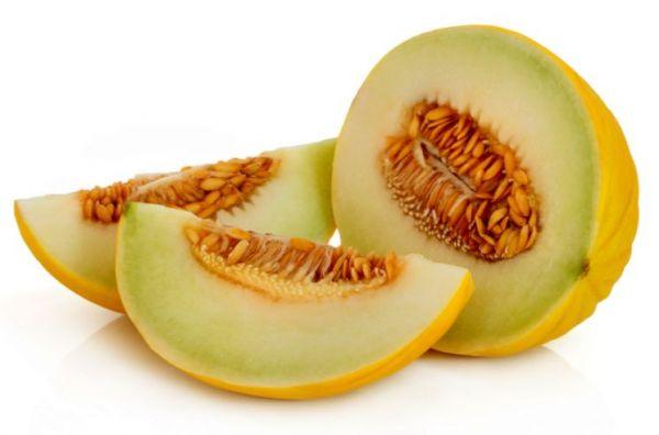 Дыня — популярные сорта, характеристики и способы выращивания