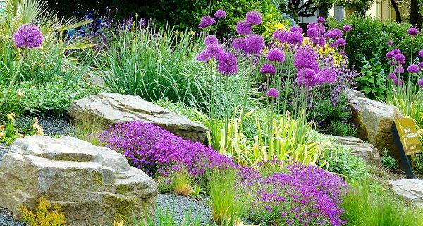 Как создать сад камней и цветов всего за неделю - 14 суперидей, от которых все придут в восторг