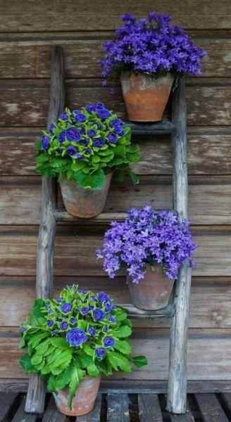 Идеи контейнерного садоводства, которые захочется повторить на своей даче
