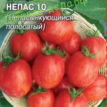 «Непас» — значит непасынкующийся! Неприхотливые томаты для открытого грунта и пленочных укрытий