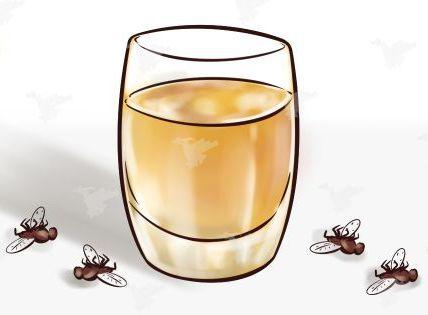 С этим средством вы забудете о мухах, комарах и тараканах в доме максимум через 2 часа 5