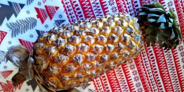 Выращиваем ананасы на подоконнике. Подготовка и посадка ананаса 1