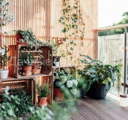 Как превратить незастекленный балкон в патио для летнего отдыха 3