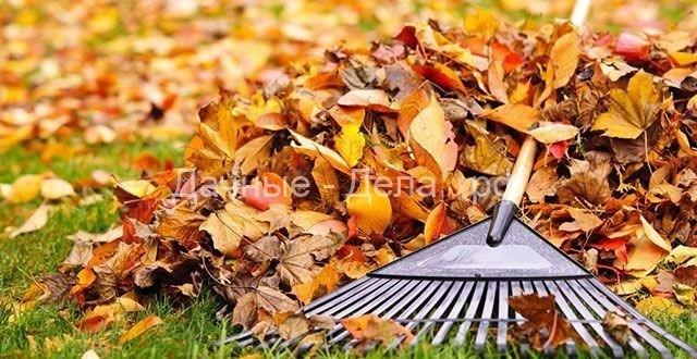 Для компоста и биогумуса. Делаем из листвы чудо-удобрения