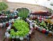 Клумбы для цветов из пластиковых бутылок – все пойдет в дело 7