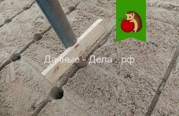 Моя технология посадки озимого чеснока: путь от обработки зубчиков и самодельного приспособления до отменного урожая 27