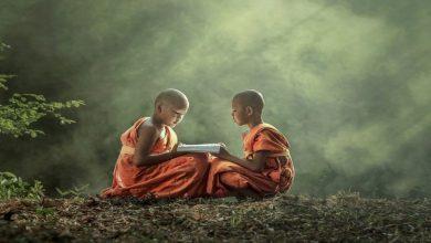 буддийская мудрость