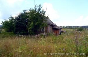 Дом в деревне Жарки