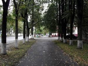 На улочках Шарьи