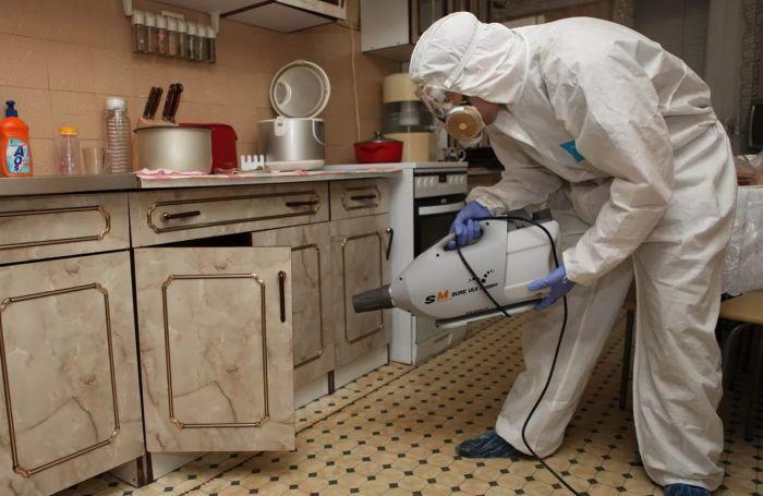 Дезинфекция от тараканов в квартире в Москве, цена