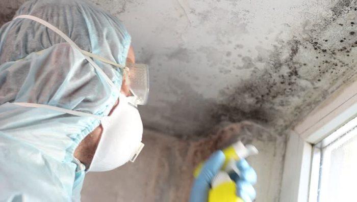 Перекись водорода от грибка плесени на стенах