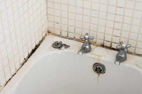 Удаление плесени в ванной комнате, как убрать грибок