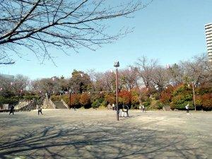 飛鳥山公園の桜・2020/03/18