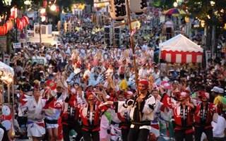東京高圓寺阿波舞祭2