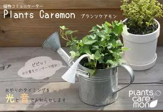 植物關心家
