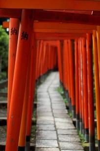 東京旅遊景點-根津神社