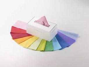 世界第一昂貴的盒裝衛生紙★大昭和紙工「十二單色衛生紙」與「新十二單色衛生紙」