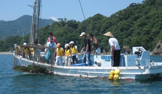 上ノ加江漁協 漁業体験