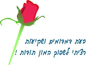 תודה , פרח שושנה