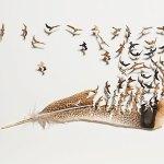 Пух и перья! Необычные вырезки Криса Мэйнарда