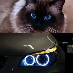 Какие глаза