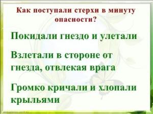"""Викторина по книге Флинта """"Где живет белый журавль"""""""