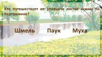 """Викторина по рассказу И. Соколов-Микитов """"Вертушинка"""""""