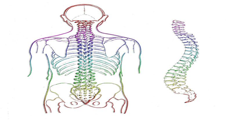 Кинезитерапия при гръбначни изкривявания
