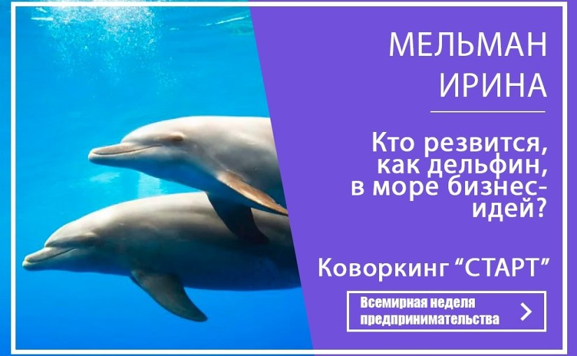 Кто резвится, как дельфин, в море бизнес- идей?