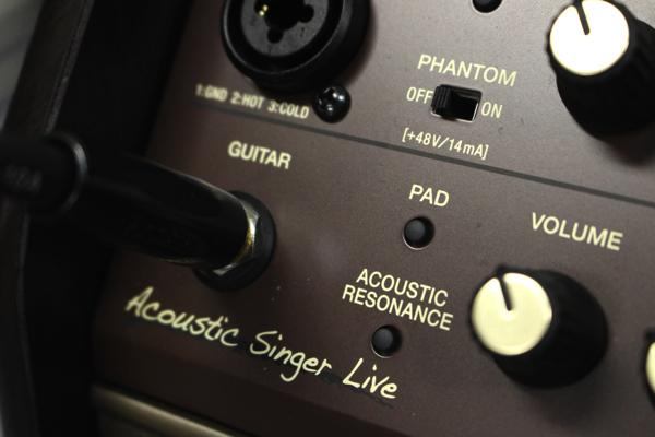 Acoustic Singer 10