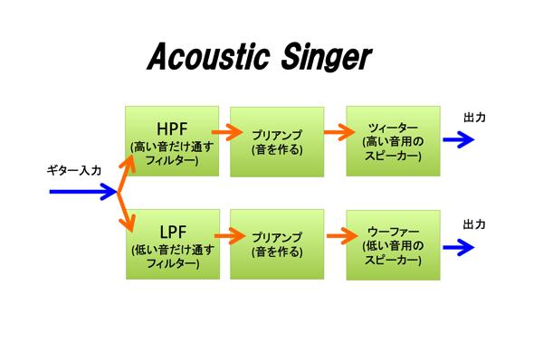 Acoustic Singer 14